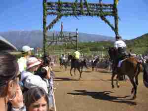 Fiesta La Palma